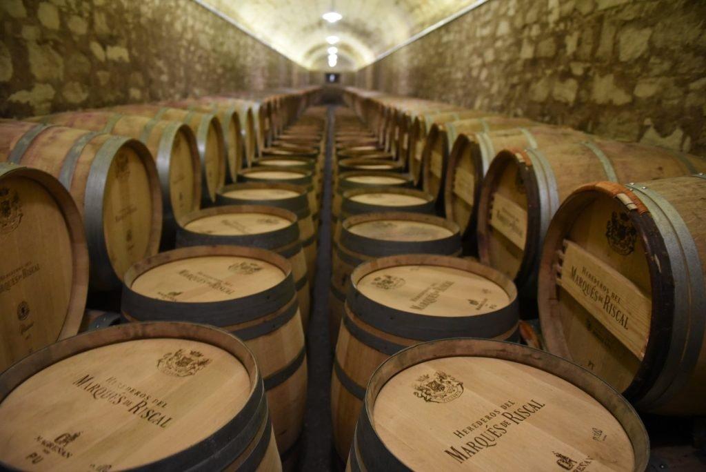 Wijnstock in Elciego, Spanje