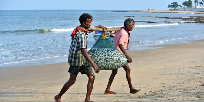india beach fishermen fish