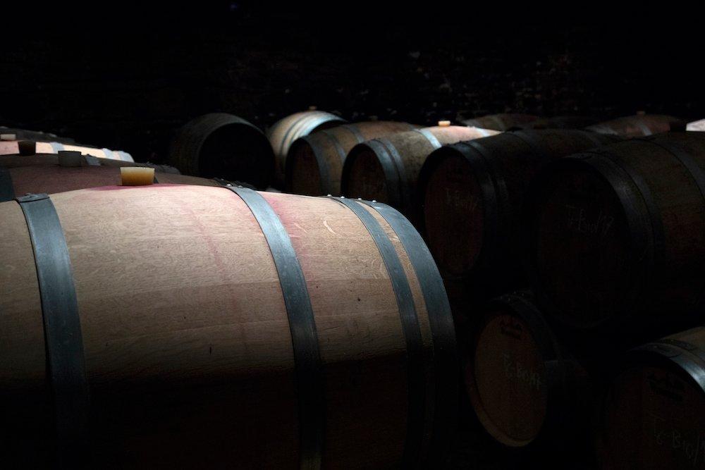 Op zoek naar de ziel van Oostenrijkse wijn - Wieninger